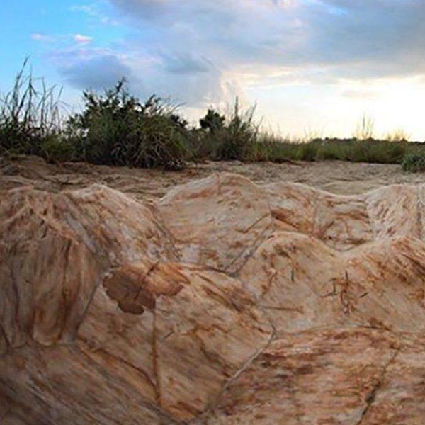 Terrapin Basin